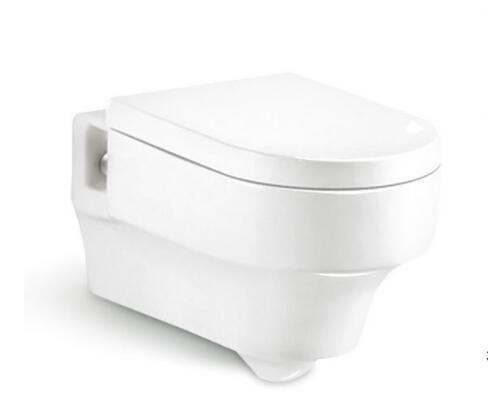 Wall Hung Toilet T8214