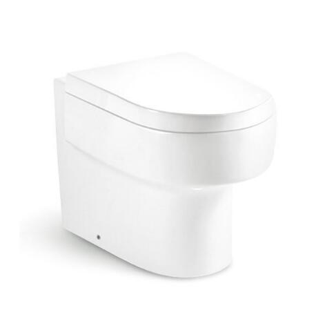 Wall Hung Toilet T8216